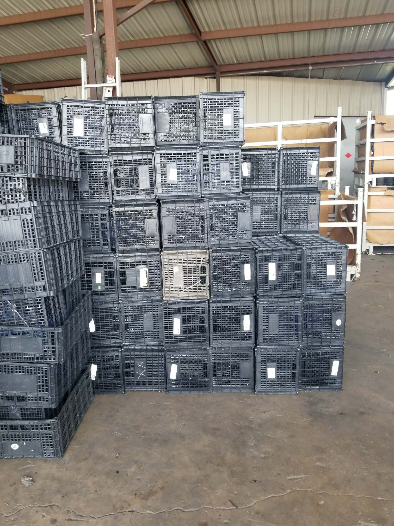 PP Loose PP-Black-Fruit Crates