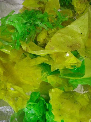 Pp plastic scrap available  21811